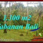 FOR SALE Affordable LAND IN Tabanan Selemadeg TJTB314