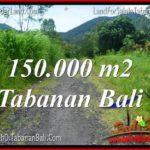 FOR SALE Affordable PROPERTY 150,000 m2 LAND IN Tabanan Penebel TJTB318