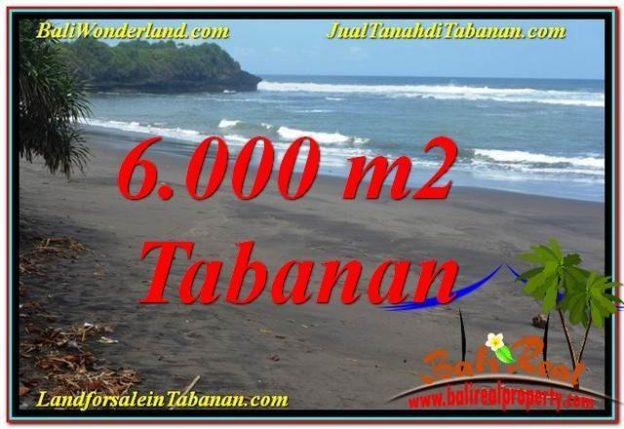 Beautiful Tabanan Selemadeg 6000 M2 LAND FOR SALE TJTB345