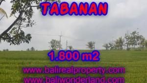 Land for sale in Bali, Outstanding view in SOKA TABANAN Bali – TJTB083