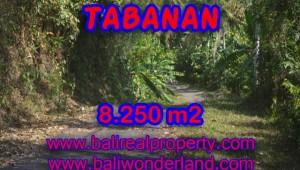 Astounding Property in Bali for sale, beach view land in Tabanan Bali – TJTB073